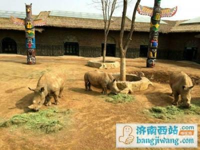 浙江重点保护野生动物